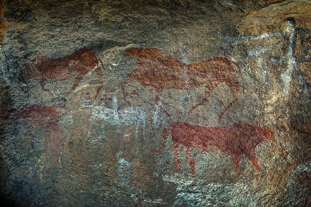 Bushman Paintings in Cave