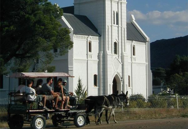 Jacobs donkey cart rides