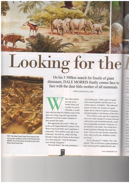Country Life Jan 2015-3